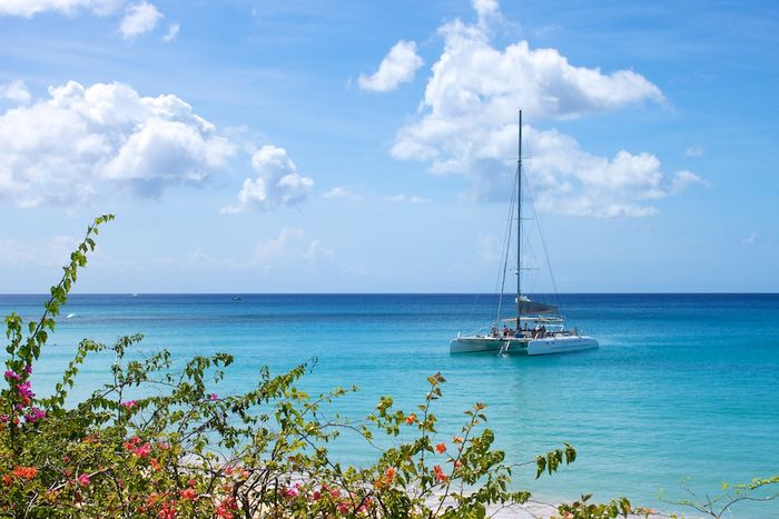 A catamaran off the Barbados coast